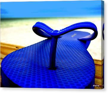 Blue Slippa Canvas Print
