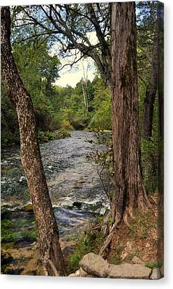 Canvas Print featuring the photograph Blue Spring Branch by Marty Koch