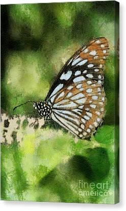 Blue Tiger Canvas Print by Lois Bryan