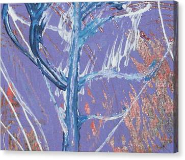 Blue Tree Canvas Print by Anne-Elizabeth Whiteway