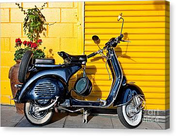 Blue Vespa Profile Canvas Print