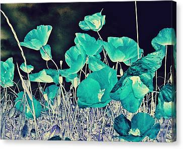 Blue Vision Canvas Print