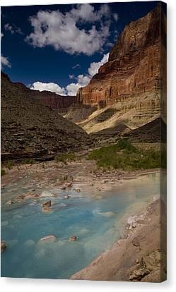 Blue Water, Travertine, Little Colorado Canvas Print by Ralph Lee Hopkins