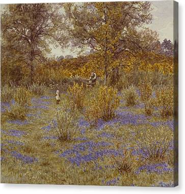 Bluebell Copse Canvas Print by Helen Allingham