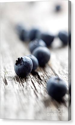 Blueberries Canvas Print by Kati Molin