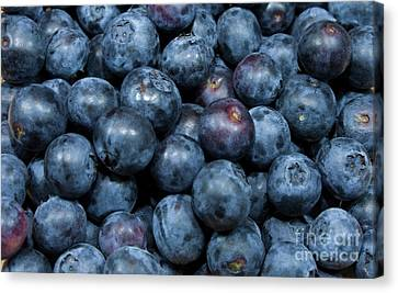 Blueberries Canvas Print by Michael Waters