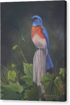 Bluebird Canvas Print by Kathleen  Hill