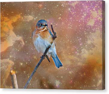 Bluebird Perched In Space Canvas Print by J Larry Walker