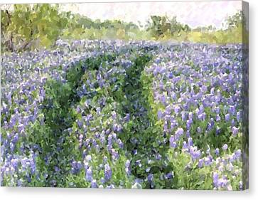 Canvas Print featuring the photograph Bluebonnet Trail by Donna  Smith