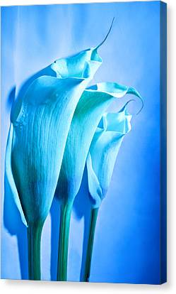 Blues Hues Canvas Print by Monte Arnold
