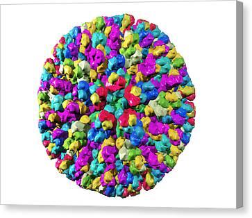Bluetongue Virus Particle Canvas Print by Laguna Design
