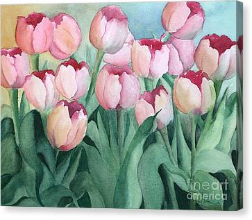 Blushing Tulips Canvas Print