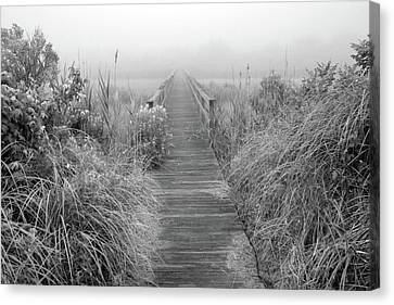 Boardwalk In Quogue Wildlife Preserve Canvas Print by Rick Berk