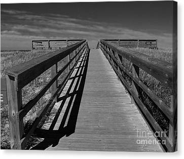 Canvas Print featuring the photograph Boardwalk by Lin Haring