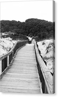 Canvas Print - Boardwalk by Tanya Chesnell