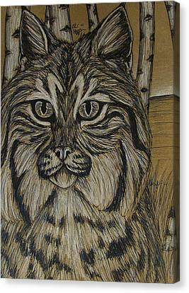 Bobcat And Birch 2  Canvas Print by Olivia Hoppe