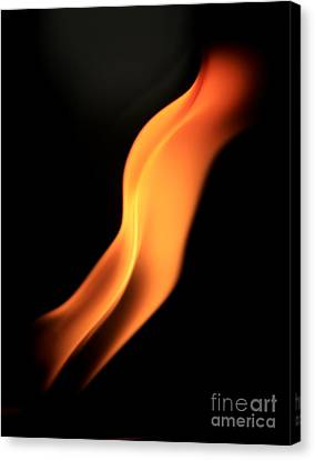Body Of Fire Canvas Print by Arie Arik Chen