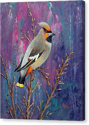 Bohemian Waxwing Canvas Print by Dee Carpenter