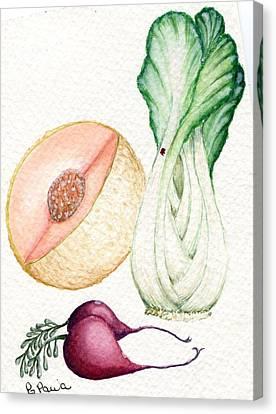 Bok Choi Spring Canvas Print