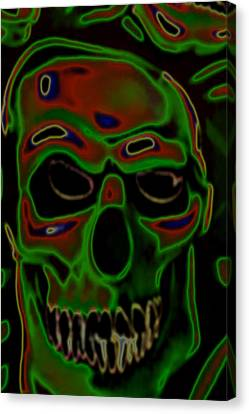 boo Canvas Print by Barry Shaffer