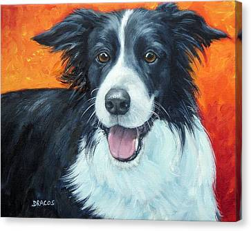 Border Collie On Red Canvas Print by Dottie Dracos