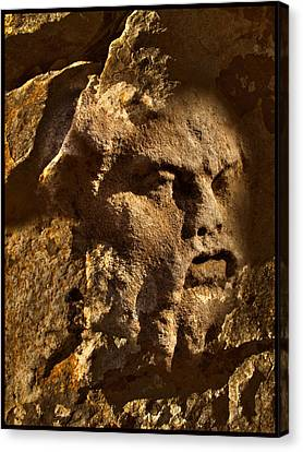 Born In Stone 3 Canvas Print by Algis Kemezys