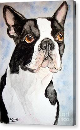 Boston Terrier Canvas Print by Carol Grimes