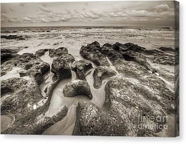 Botany Bay Clay Sands Canvas Print by Dustin K Ryan