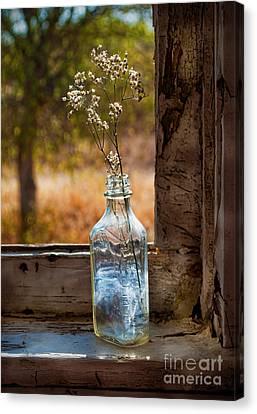 Bottle On Window Sill Canvas Print