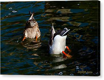 Bottoms Up Canvas Print by Jephyr Art