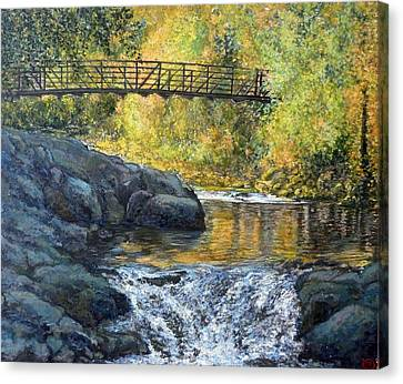 Boulder Creek Canvas Print