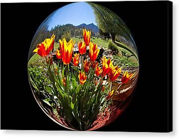 Bouquet In A Bubble Canvas Print
