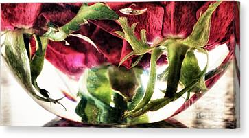 Bowl Of Roses Canvas Print by Stelios Kleanthous