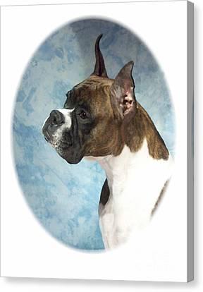 Boxer 816 Canvas Print by Larry Matthews