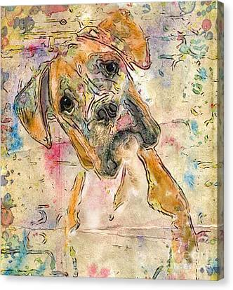 Canvas Print - Boxer Babe by Marilyn Sholin