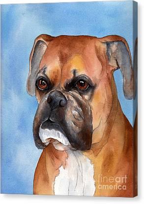 Boxer Canvas Print by Cherilynn Wood