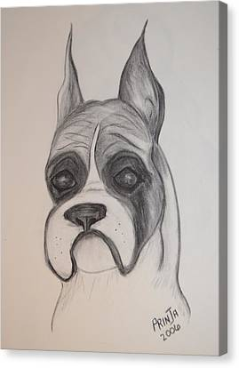 Canvas Print featuring the drawing Boxer by Maria Urso