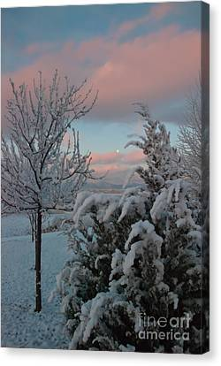 Boyd Lake Winter Moonset Canvas Print by Harry Strharsky