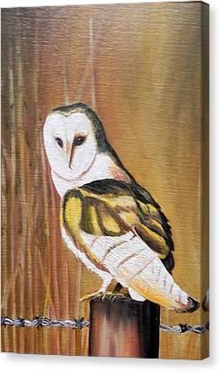 Bran Owl Canvas Print by Usha Rai