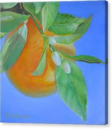 Branche En Boutons Canvas Print by Muriel Dolemieux