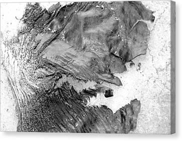 Breakaway Canvas Print