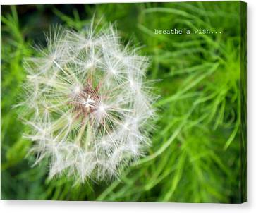 Canvas Print featuring the photograph Breathe A Wish by Robin Dickinson