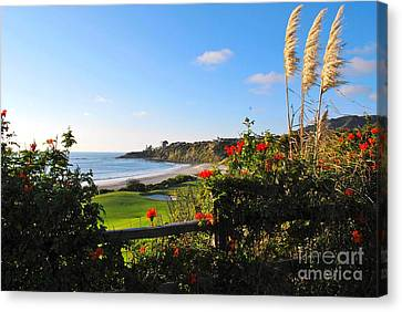 Canvas Print featuring the photograph Breathe In by Johanne Peale