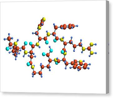 Bremelanotide Drug Molecule Canvas Print by Dr Mark J. Winter