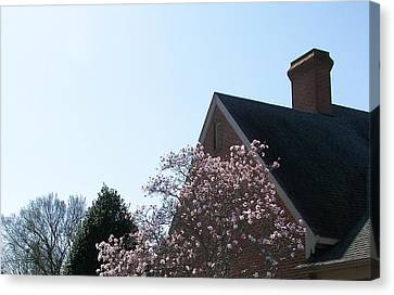 Canvas Print featuring the photograph Brick And Blossom by Pamela Hyde Wilson