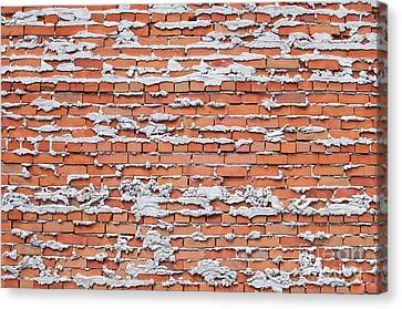 Canvas Print featuring the photograph Brick Wall With Mortar by Les Palenik