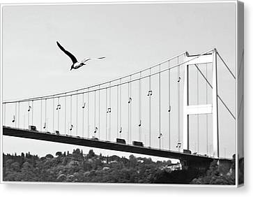 Flying Seagull Canvas Print - Bridge And Seagull, Bosphorus, Istanbul, Turkey by Gulale