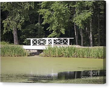 Bridge Over An Algae Covered Pond Canvas Print by Jaak Nilson