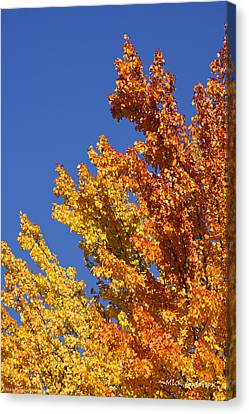Brilliant Fall Color And Deep Blue Sky Canvas Print by Mick Anderson