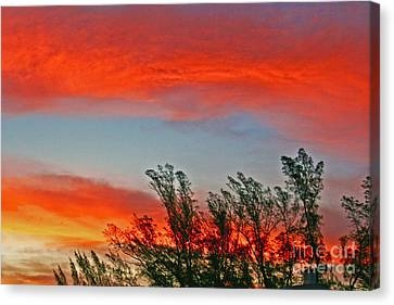 Canvas Print featuring the photograph Brilliant Sunrise by Joan McArthur